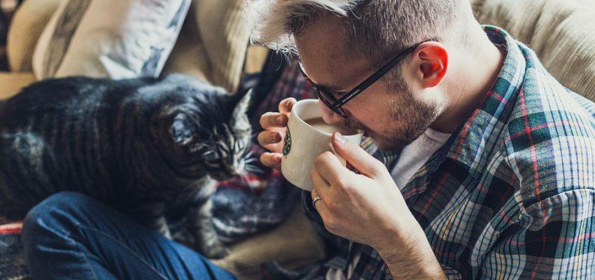 Mand og kat i sofa